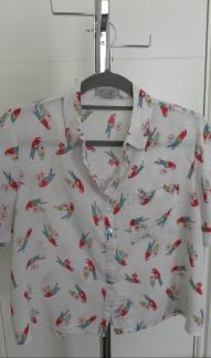 Parrot Top